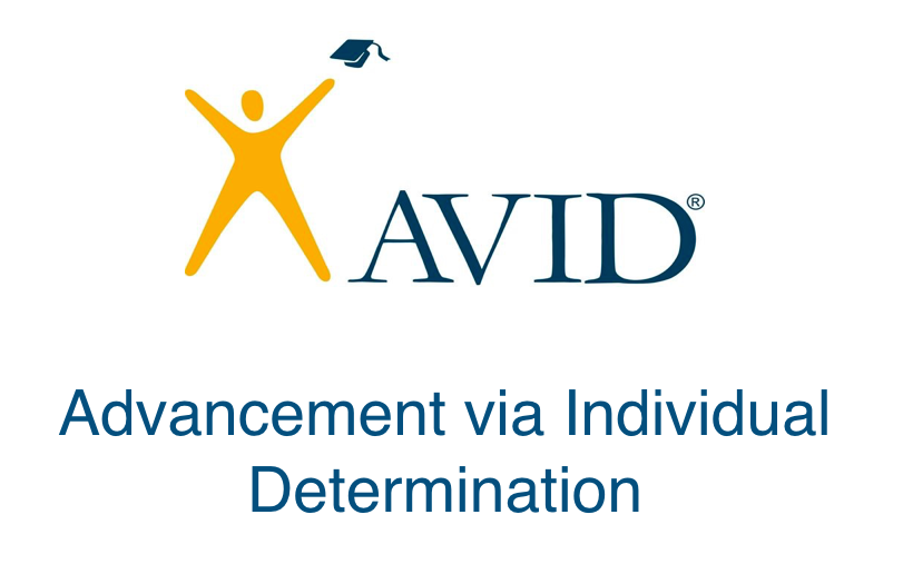 Image result for avid