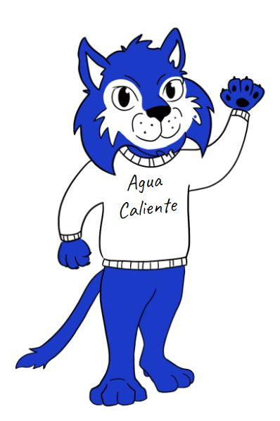 Wilfredo the Wildcat!